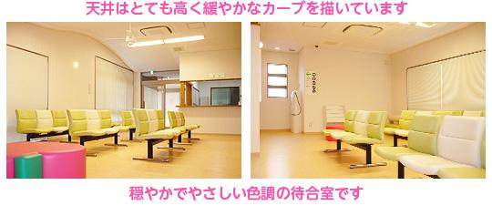 天井はとても高く緩やかなカーブを描いています。穏やかでやさしい色調の待合室です。